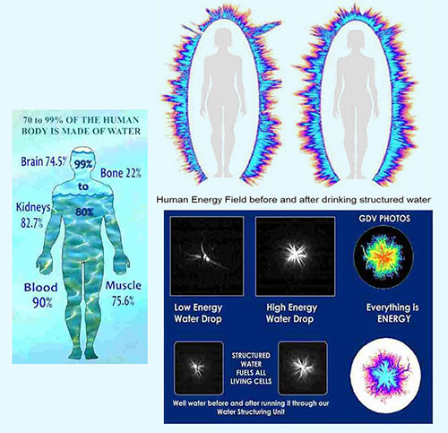 Structured water benefits for health & human body with Crystal Blue's whole house structured water units