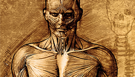 Human Body - Structured water for human body & personal use - structured water health benefits