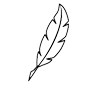 black chichen feather - Use Crystal Blue's structured water devices to improve quality of poultry